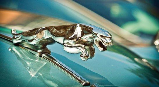 História značky Jaguar