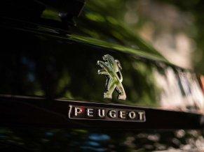 PEUGEOT 3008 (new)